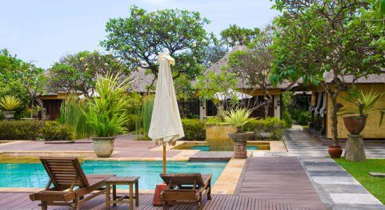 Pools, Patio, Plants, Landscape, Landscaping
