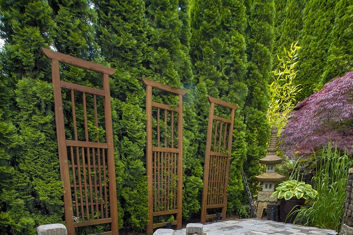 Landscape, Landscaping, Landscaping plants, Landscaping Ideas, Frontyard Landscaping, Backyard Landscaping, Walls And Borders