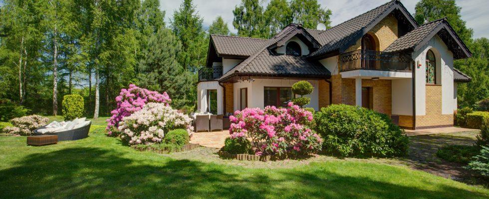 Privacy Landscaping, Flowers, Garden, Gardening, Landscape, Landscaping