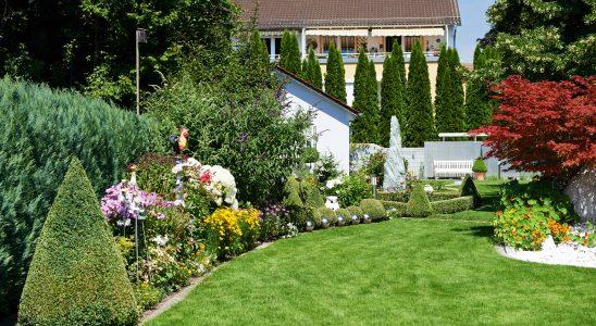 Flowers, Garden, Gardening, Landscape, Landscaping