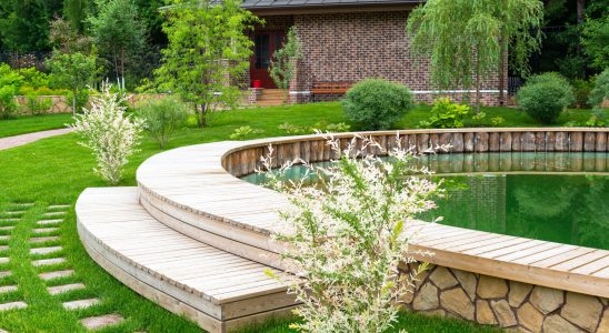 Natural Landscaping in Home Garden, Country House
